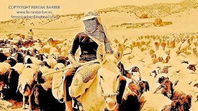 Yazidíes de Irak