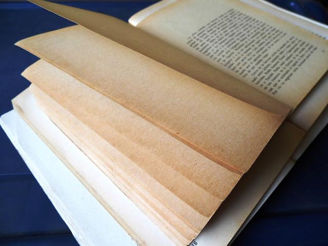 Hojas amarillas  de un libro