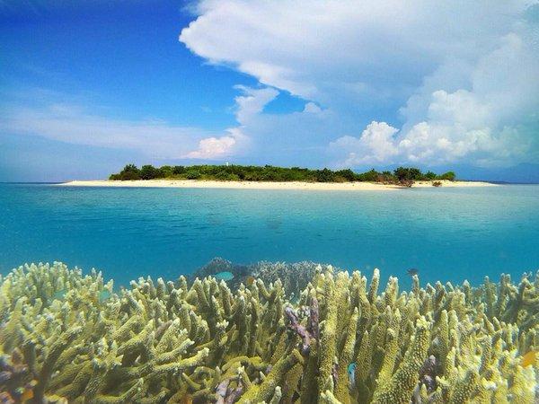 Pantai Bangsring dan Snorkling