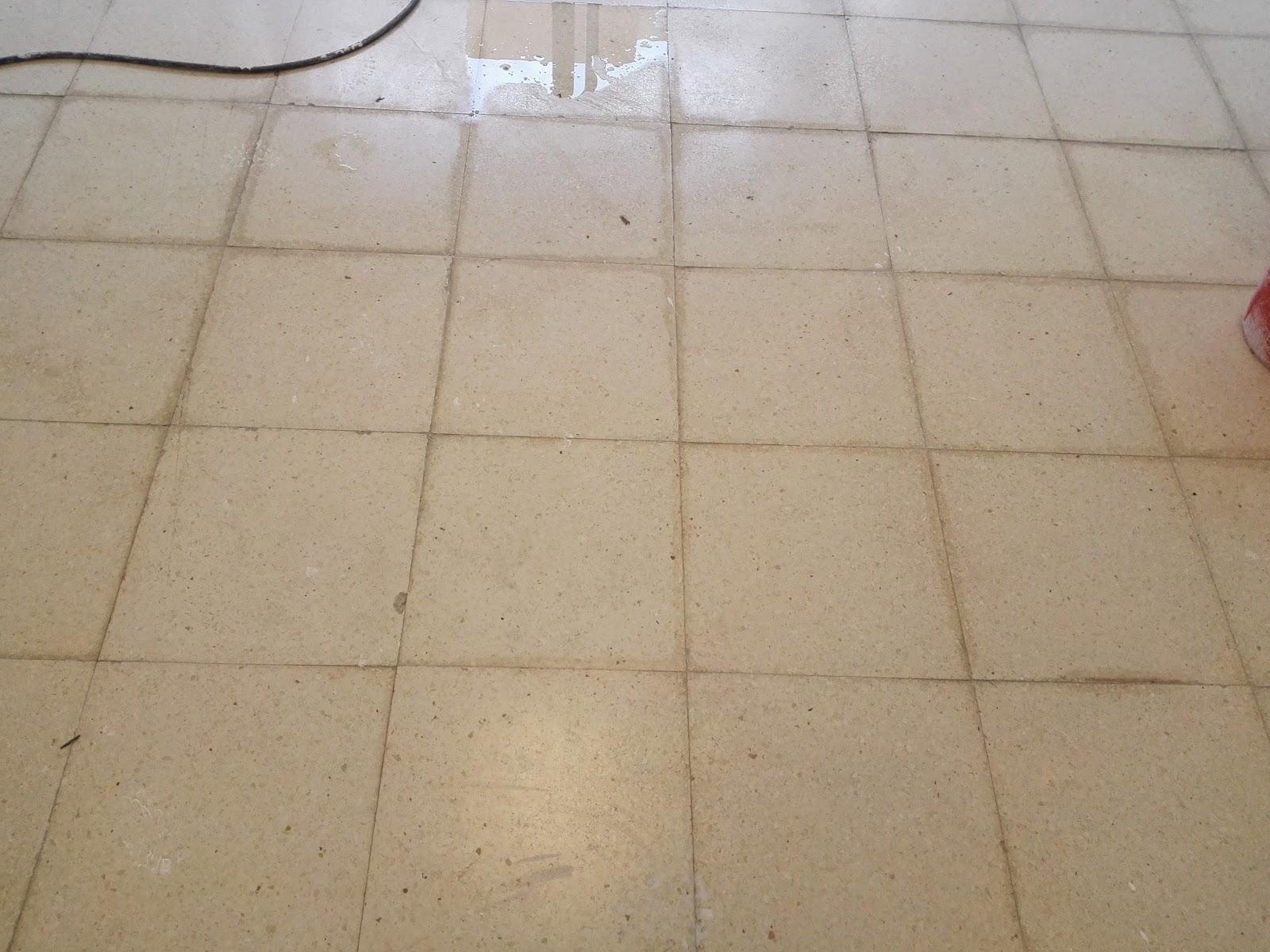 Pulido y cristalizado de suelos javier ballesteros for Como pulir suelo de terrazo