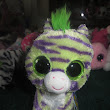 Day 7 Introduction of Beanie Boos (Zebras)
