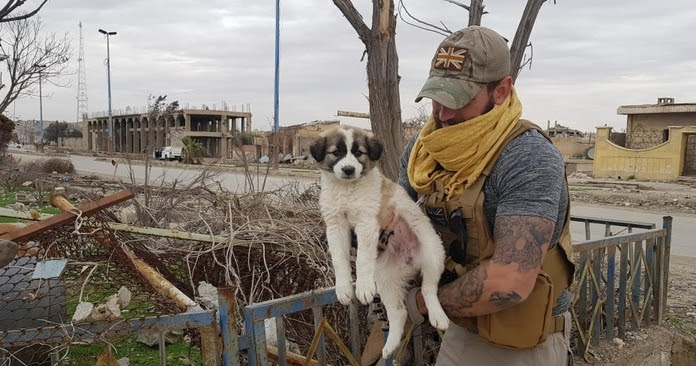 Pooch travels 3,000 miles to reunite with soldier who saved her from a explosion