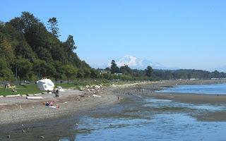 Beach Casting Plum Island