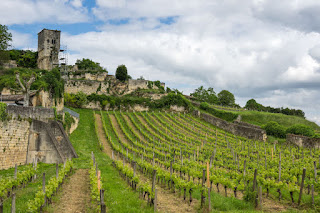 Vineyards of Saint-Emilion in Bordeaux
