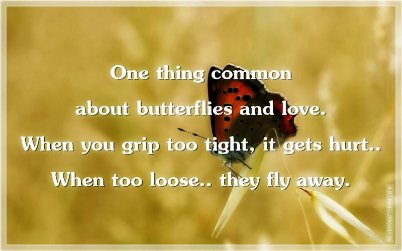 One Thing Common About Butterflies And Love, Picture Quotes, Love Quotes, Sad Quotes, Sweet Quotes, Birthday Quotes, Friendship Quotes, Inspirational Quotes, Tagalog Quotes