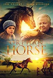 Orphan Horse Legendado