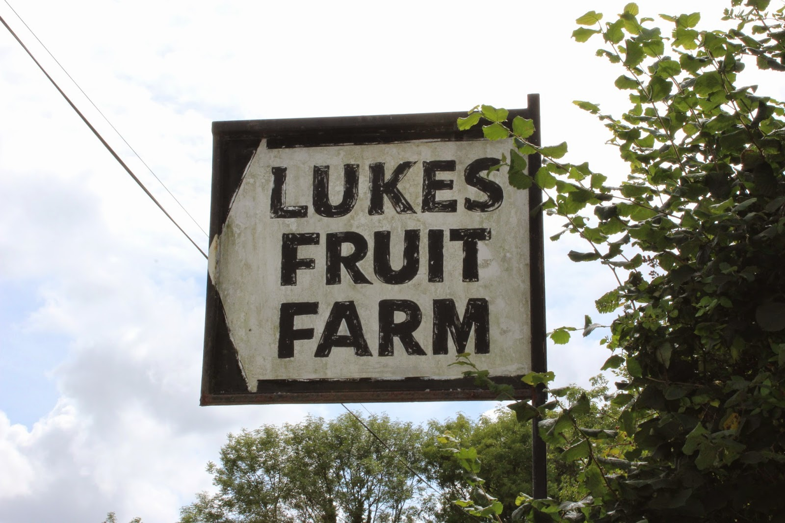 Lukes-fruit-farm