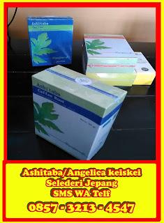 Obat Kanker Ashitaba Adalah Obat Kanker Herbal Penyembuh Kanker/Tumor