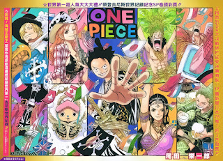 Cover One Piece 790