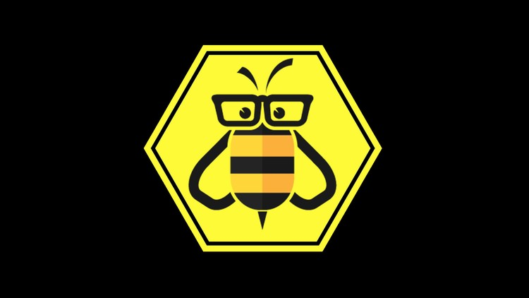 Learn Python: Like a Bee Student coupon