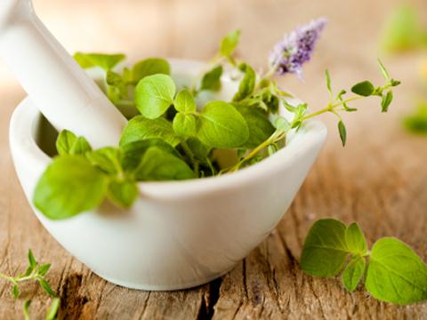 Mengatasi Campak dan Demam Kuning dengan Herbal