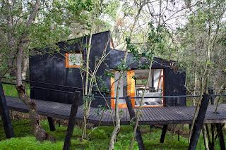 Cabaña de ensueño en el bosque.