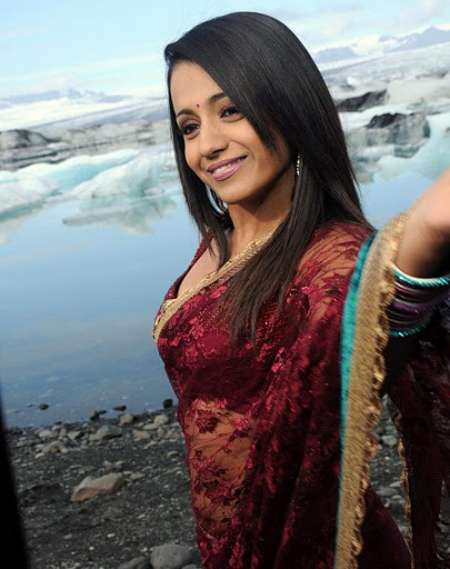 trisha in transparent saree hot images