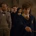 """Tem Newt mais novo no meio e muitas coisas mais no novo trailer de """"Os Crimes de Grindelwald"""""""