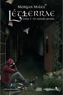 http://lesreinesdelanuit.blogspot.be/2016/04/letherrae-t1-le-monde-perdu-de-morgan.html