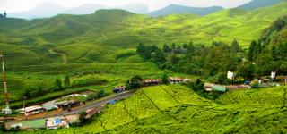 Pariwisata Puncak merupakan salah satu tujuan wisata favorit bagi warga Jakarta dan sekitarnya untuk menghabiskan akhir pekan mereka. Tak pelak, volume lalu lintas di puncak dari arah Jakarta dan Bogor sering diisi dengan plat kendaraan B
