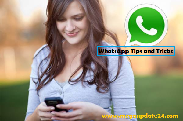 WhatsApp Tips and Tricks, Tips and Tricks, WhatsApp Tips