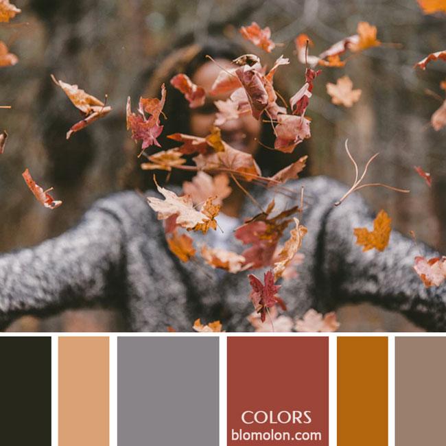 variedad_en_color_paletas_de_colores_29