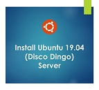 Install Ubuntu 19.04 (Disco Dingo) Server