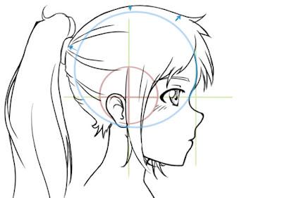 dessiner les cheveux de profil en laissant un espace entre le crâne et les cheveux