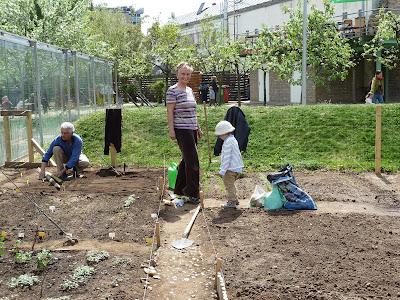 Közösségi kert Budapest Millenáris