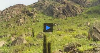 http://cienciassolemnes.blogspot.com.es/2016/12/geomorfologia-desiertos.html?m=1