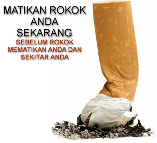 HARGA ROKOK MAKIN NAIK!!