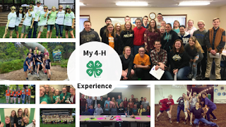 My 4-H Experience
