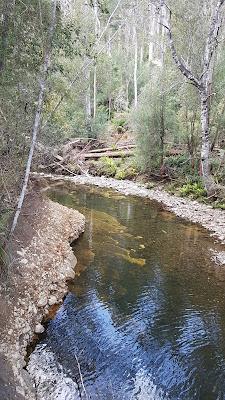 Sandspit River