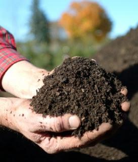 Keunggulan pupuk organik nutrisi yang dibutuhkan oleh tanaman
