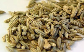 http://indonesian-herbal-medicine.blogspot.com/2015/05/fennel-homeremedies-for-cough.html