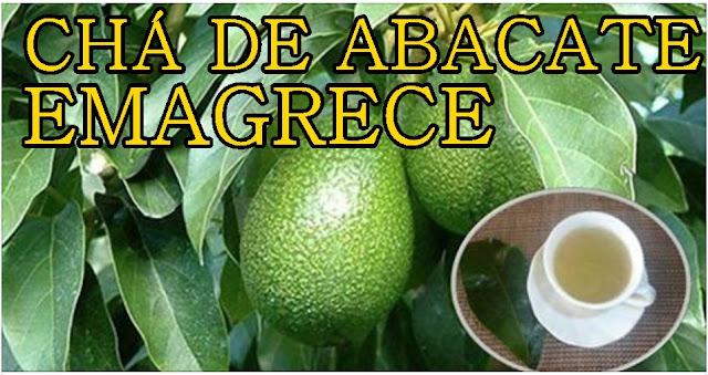 cha-de-folhas-de-abacate-para-amagrecer
