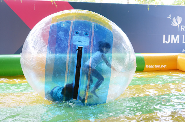 Zorb Balls for the kids