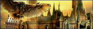 http://hogwart-nowa-historia.blogspot.com/