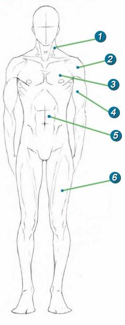 Desenhe Bem Aqui Como Desenhar Corpo Masculino