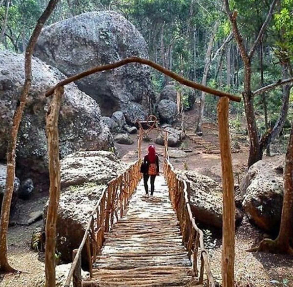 Tempat Wisata Rumah Hobbit Di Jogja - Tempat Wisata Indonesia