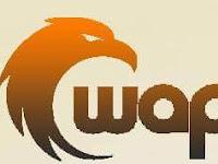 Kecewa Terhadap Wapblog.id