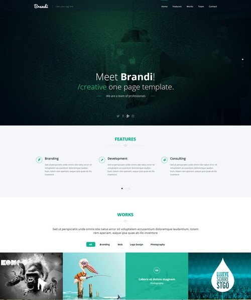 Brandi – Creative One Page Multi-Purpose PSD Template
