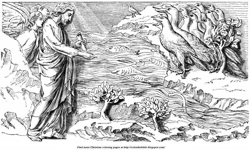 fly angel coloring pages | Creation of Fishes and Birds | Color The Bible