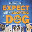Author Interview | Diane Solomon - What to Expect When Adopting a Dog!
