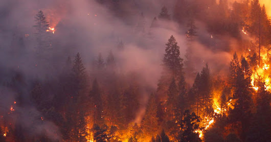 California Natural Areas Are Burning