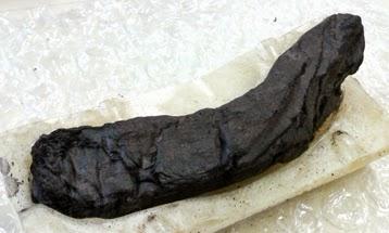 Les secrets révélés des rouleaux carbonisés d'Herculanum
