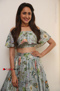 Actress Pragya Jaiswal Stills in Floral Dress at turodu Interview  0181.JPG
