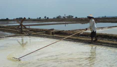 Peta Indonesia: Pengertian Petani Garam Menurut Para Ahli