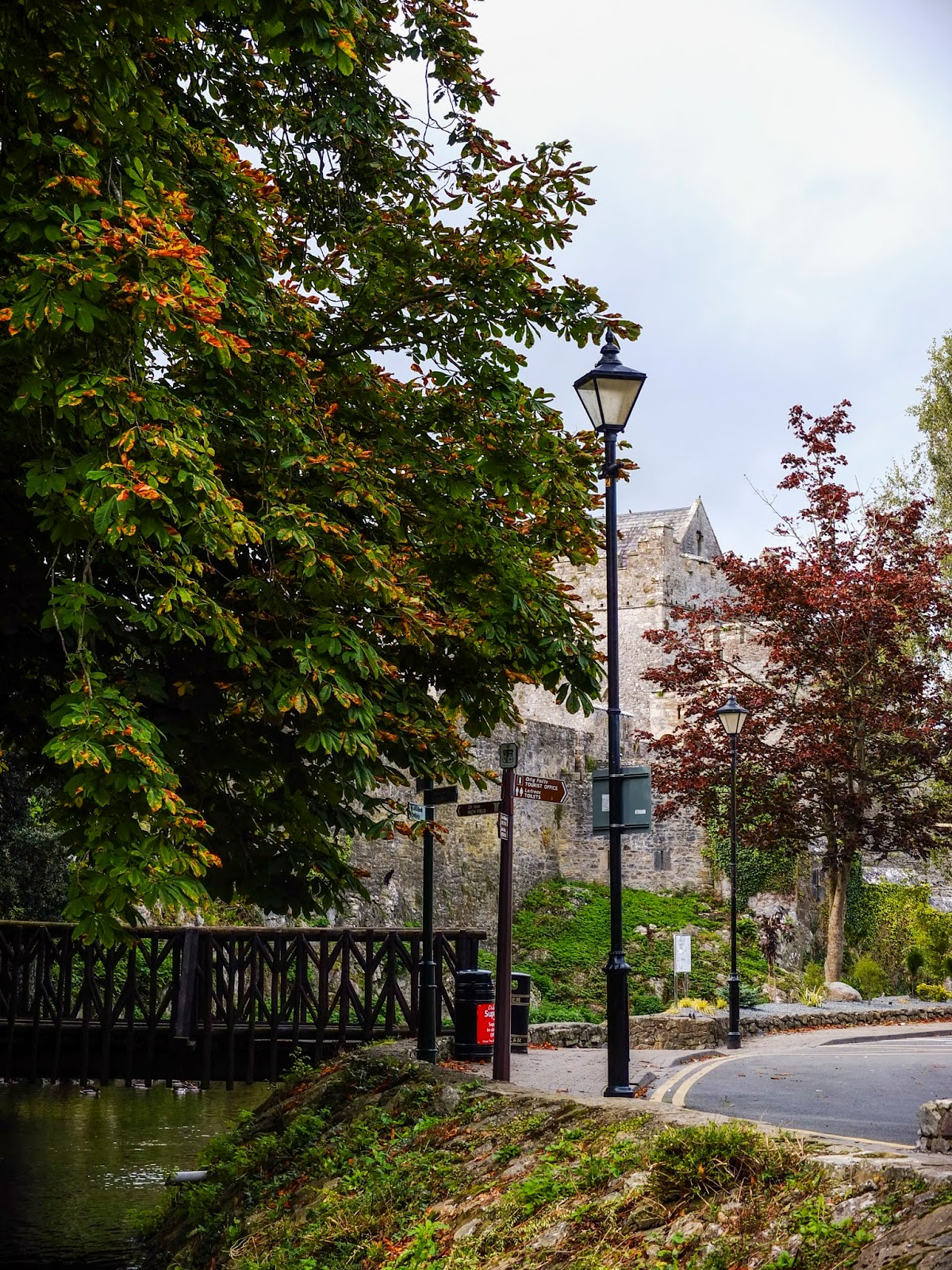Trees and a bridge outside the Cahir Castle, Co.Tipperary.
