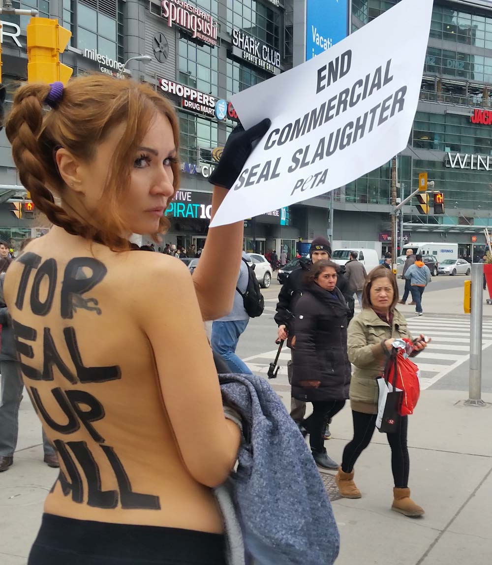 Nice protester topless peta protest