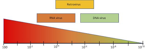 Tasa mutación en genomas virales
