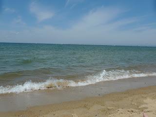 First-Landing-State Park-Virginia-Beach