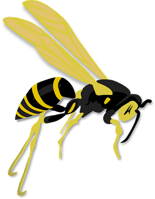 hymenoptera gran parasitoide con sus larvas