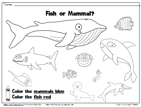 Colors and Kindergarten: My Science Journal: Ocean